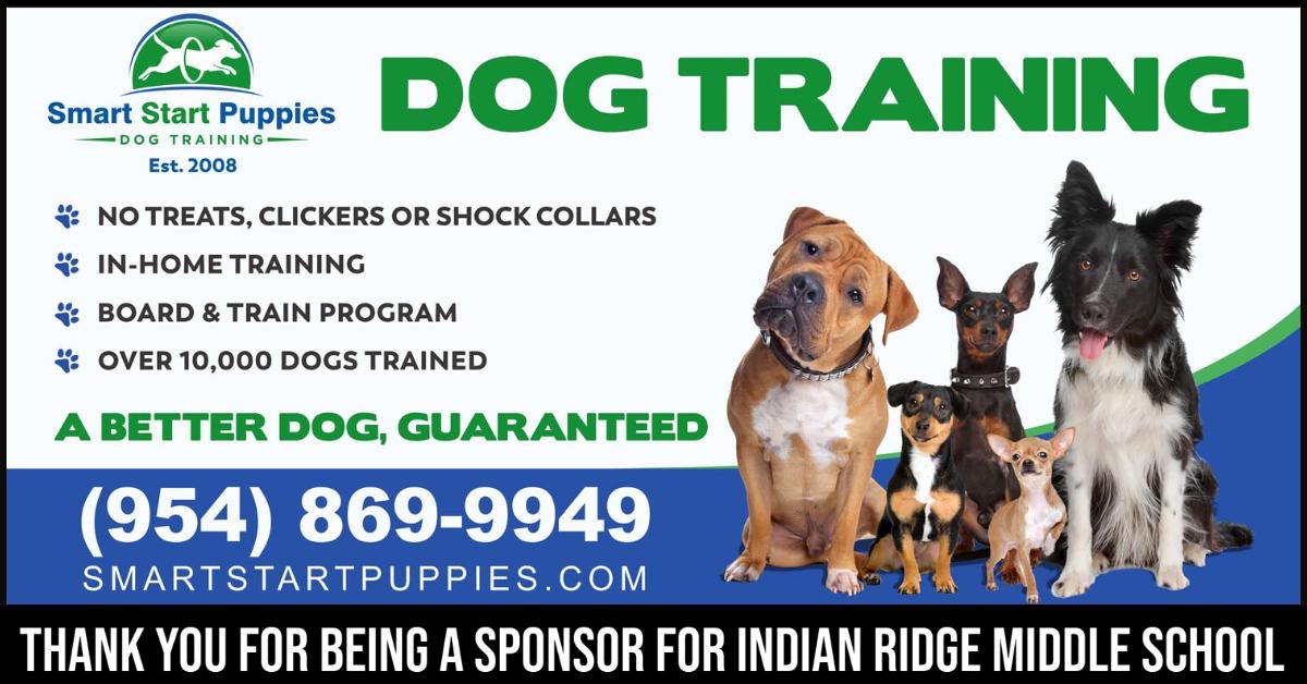 Dog Training Davie FL